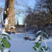 Achtertuin de Boomklever in de winter