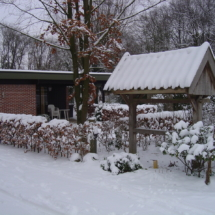 Kateeker in de winter